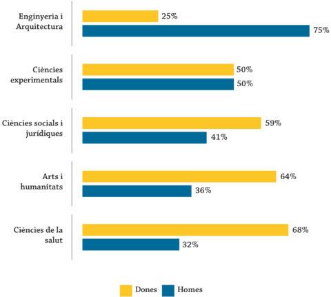 Matrícula en estudis de grau segons àmbit de coneixement, per sexe